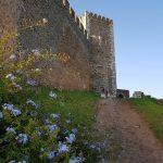 Chateau Portel